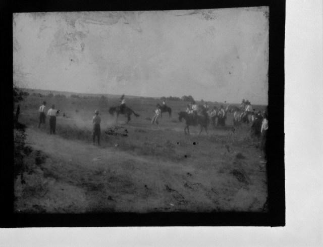 photo of Horse Activities