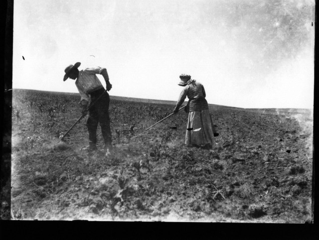 photo of Farming Couple
