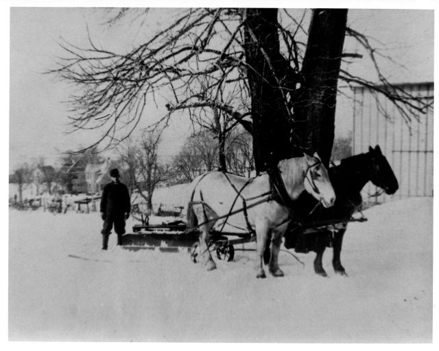 photo of Horse Drawn Snow Blade