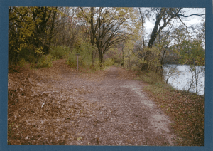 Trail in mid-fall next to a pond, surrounded by trees.
