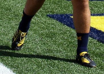 GibbonsShoes
