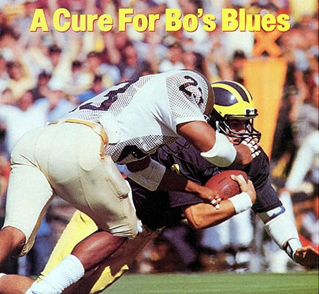 A Cure for Bo's Blues - Harbaugh
