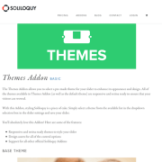 Soliloquy Add-On: Themes