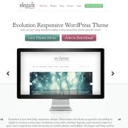 Elegant Themes: Evolution WordPress Theme