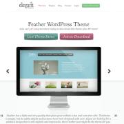 Elegant Themes: Feather WordPress Theme