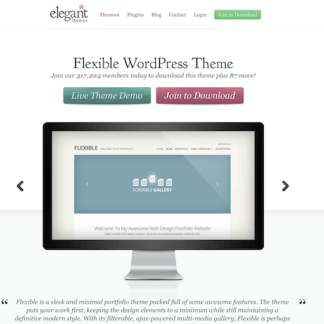 Elegant Themes: Flexible WordPress Theme