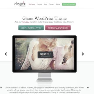 Elegant Themes: Gleam WordPress Theme