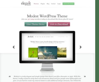 Elegant Themes: Modest WordPress Theme