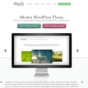 Elegant Themes: Modest WordPress Theme