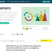 WPMU DEV: Reports WordPress Plugin