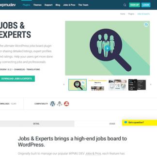 WPMU DEV: Jobs and Experts WordPress Plugin