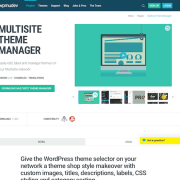 WPMU DEV: Multisite Theme Manager WordPress Plugin