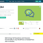 WPMU DEV: Questions and Answers WordPress Plugin