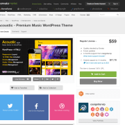 Themeforest: Acoustic