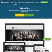 CSS Igniter: Businesstwo WordPress Theme