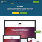 CSS Igniter: Mustache WordPress Theme