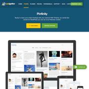 CSS Igniter: Pinfinity WordPress Theme