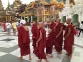 Monks at Shwedagon