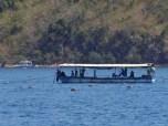 Oyster Farm Workboat