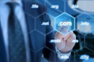 MVSLTD3-Domain-Name-Administration-1600x1067