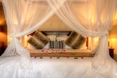 Luxury Bush Suite
