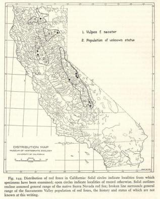 Red fox distribution map from Fur-bearing Mammals of California: Their Natural History, Systematic Status, and Relations to Man (1937), Volume II, page 382, by Joseph Grinnell, Joseph Dixon, and Jean Linsdale.