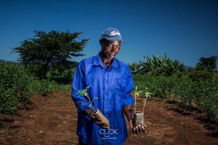 Kenya_Farmer-30