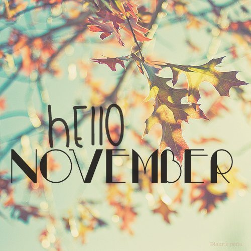 hello-november-photography-5