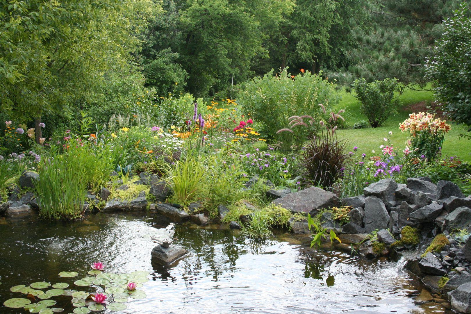 pond and perennial garden