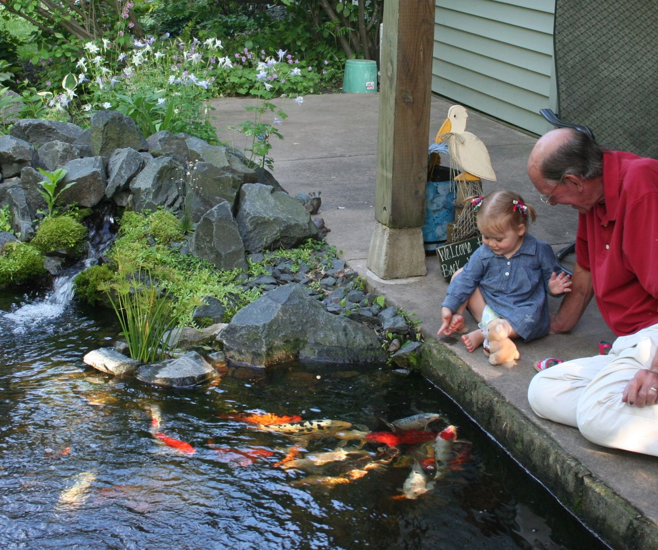 man and child by pond with koi fish