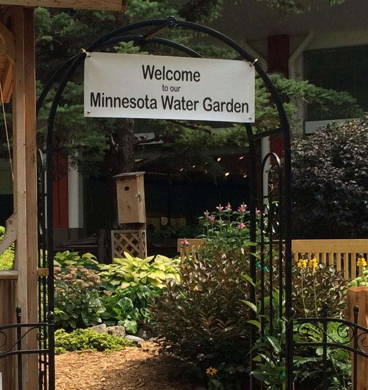 MN state fair water garden
