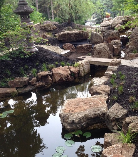 backyard pond with large, unique boulders