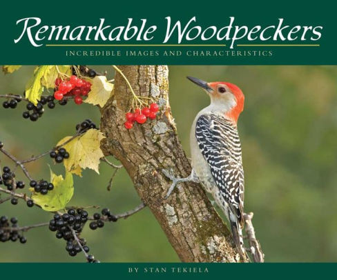 book cover Remarkable Woodpeckers by Stan Tekiela
