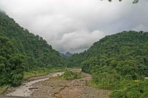 Primary rainforest, Costa Rica (C) Matt Wilson