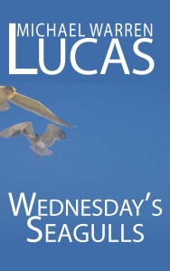 Wednesday's Seagulls cover