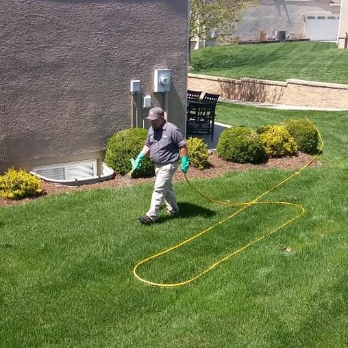 Lawn Services Fertilizer