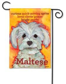 """""""Maltese"""" by Ursula Dodge SKU: 31181"""