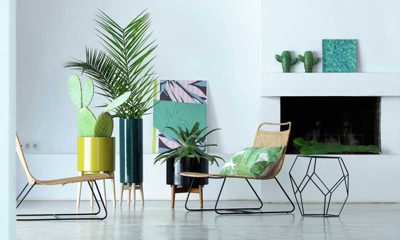 Ideas para decorar con plantas y flores