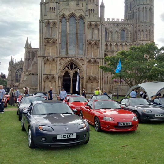 Ely Cars on the Green