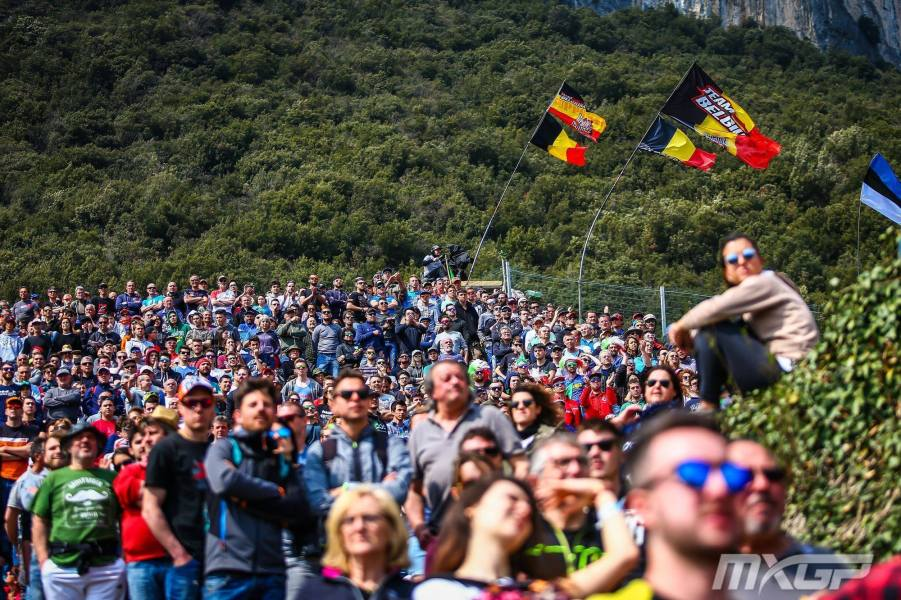 Trentino Crowd