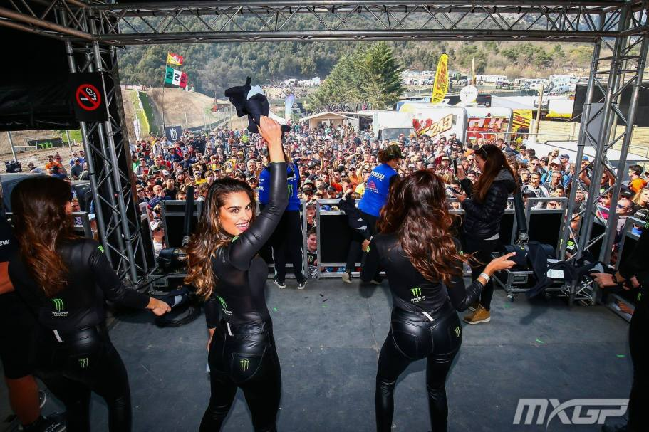 Trentino Monster Girls