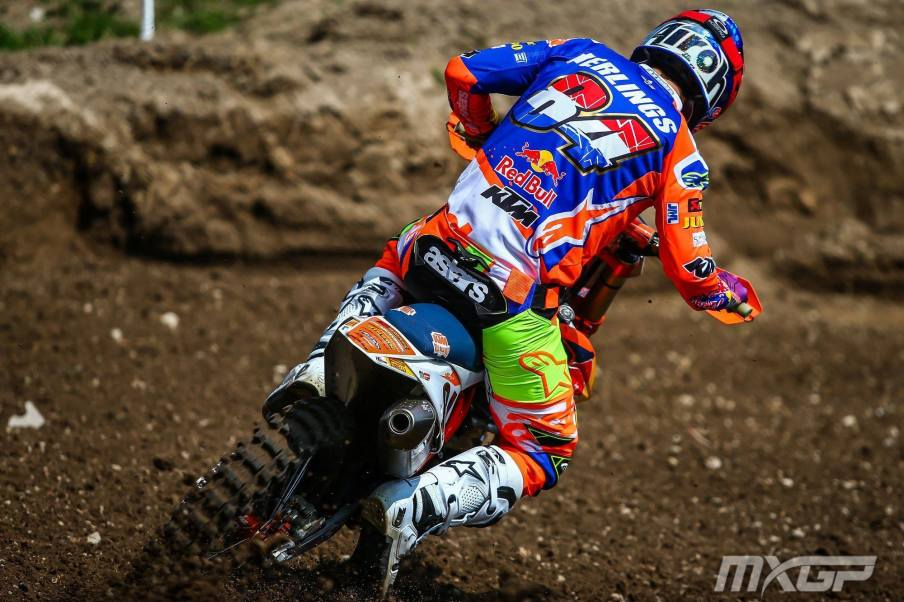 Trentino Herlings Back