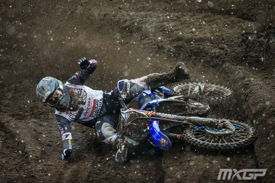 Simpson Crash Borak