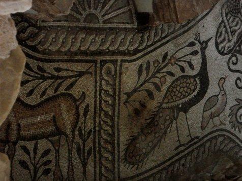 SAM 1016 - Stobi, the paradise of archeology