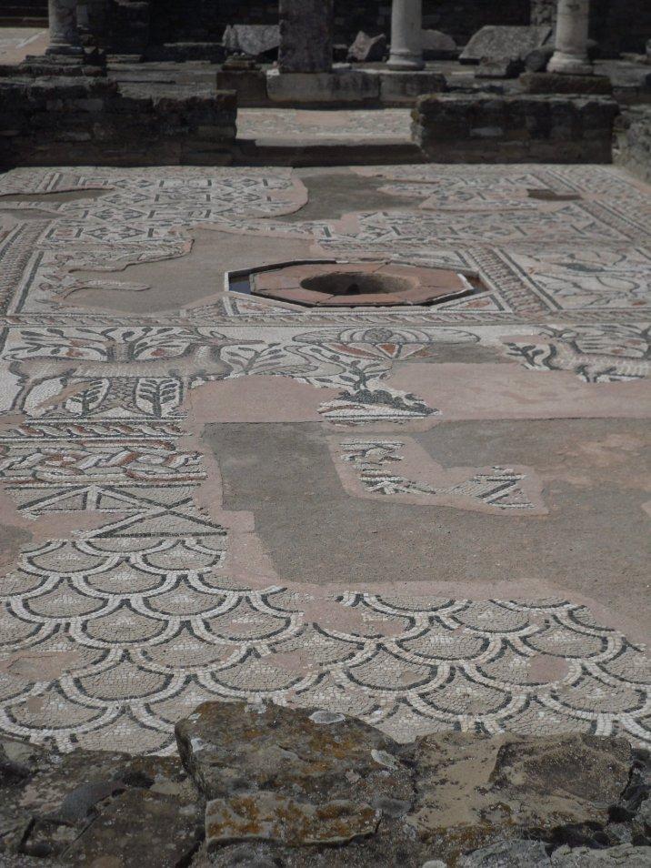 SAM 1088 - Stobi, the paradise of archeology