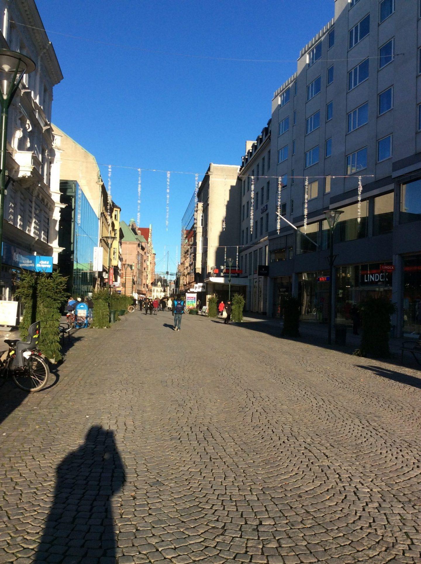IMG 0125 1440x1928 - Malmö and the history