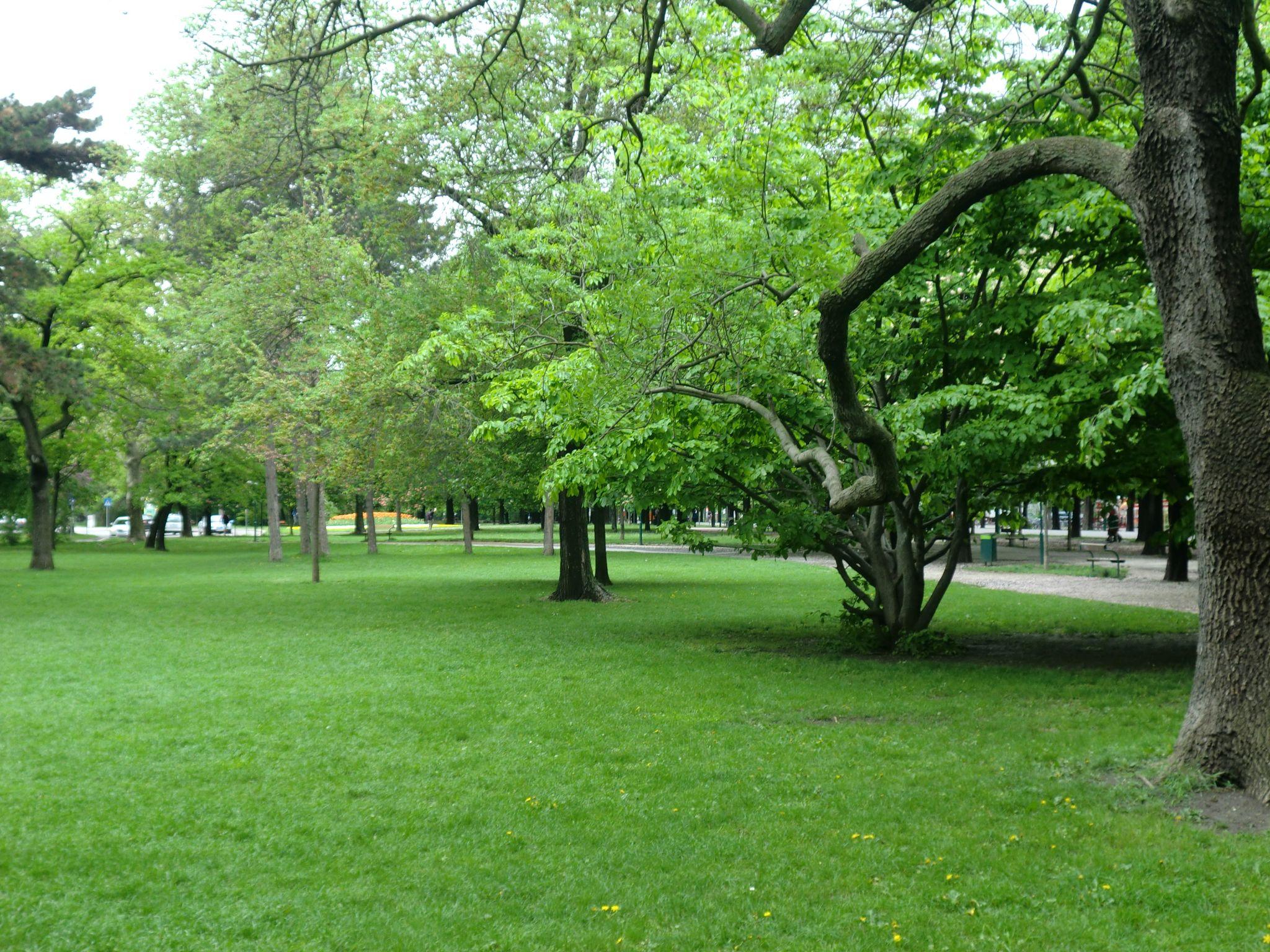 Vienna park 44 1440x1080 - Vienna: elegant beauty
