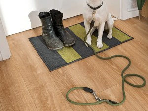 Boden mit Hund Project Floors Click Collection PW 4011
