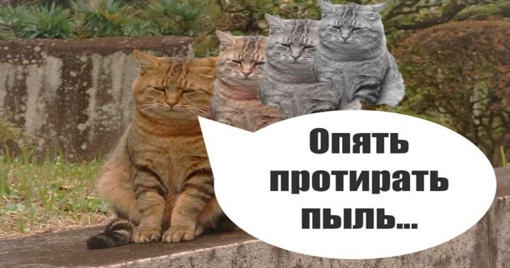 Чек лист убираться в квартире список уборки кот