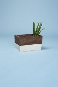 conservation-legume-sable